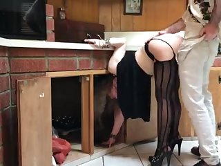 COUGAR stuck in the kitchen drilled by neighbor (pin)